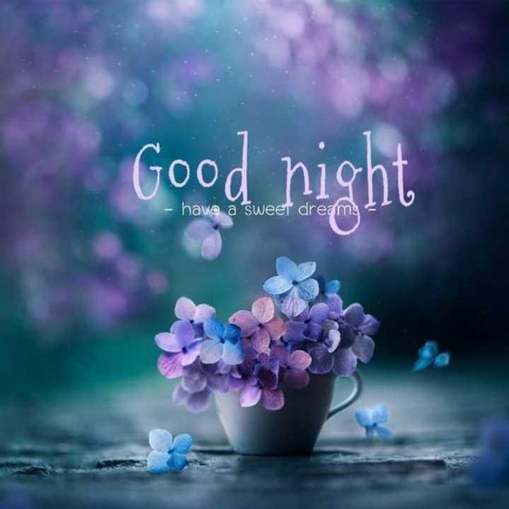 🌑শুভ রাত্রি - Good night - have a sweet dreams - ShareChat