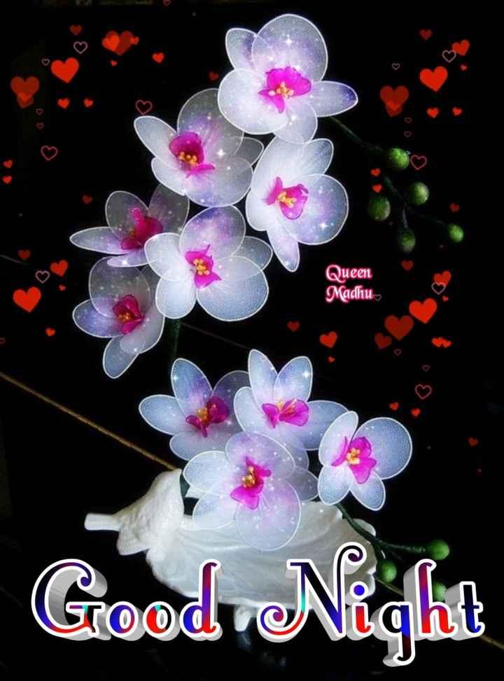 🌑শুভ রাত্রি - Queen Madhu Good Night - ShareChat
