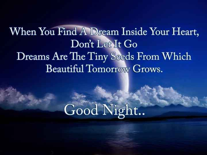 🌑শুভ রাত্রি - When You Find A Dream Inside Your Heart , Don ' t Let It Go Dreams Are The Tiny Seeds From Which Beautiful Tomorrow Grows . Good Night . . - ShareChat