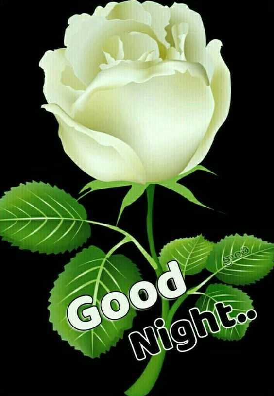 🌟🌟🌟শুভ রাত্রি 🌟🌟🌟 - S©త , Good Night . - ShareChat