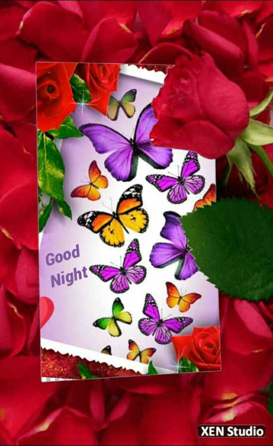 🌑শুভ রাত্রি - MAAN Good Night XEN Studio - ShareChat