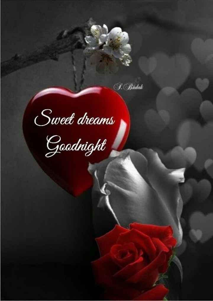 🌟🌟🌟শুভ রাত্রি 🌟🌟🌟 - J . Budak Sweet dreams Goodnight - ShareChat