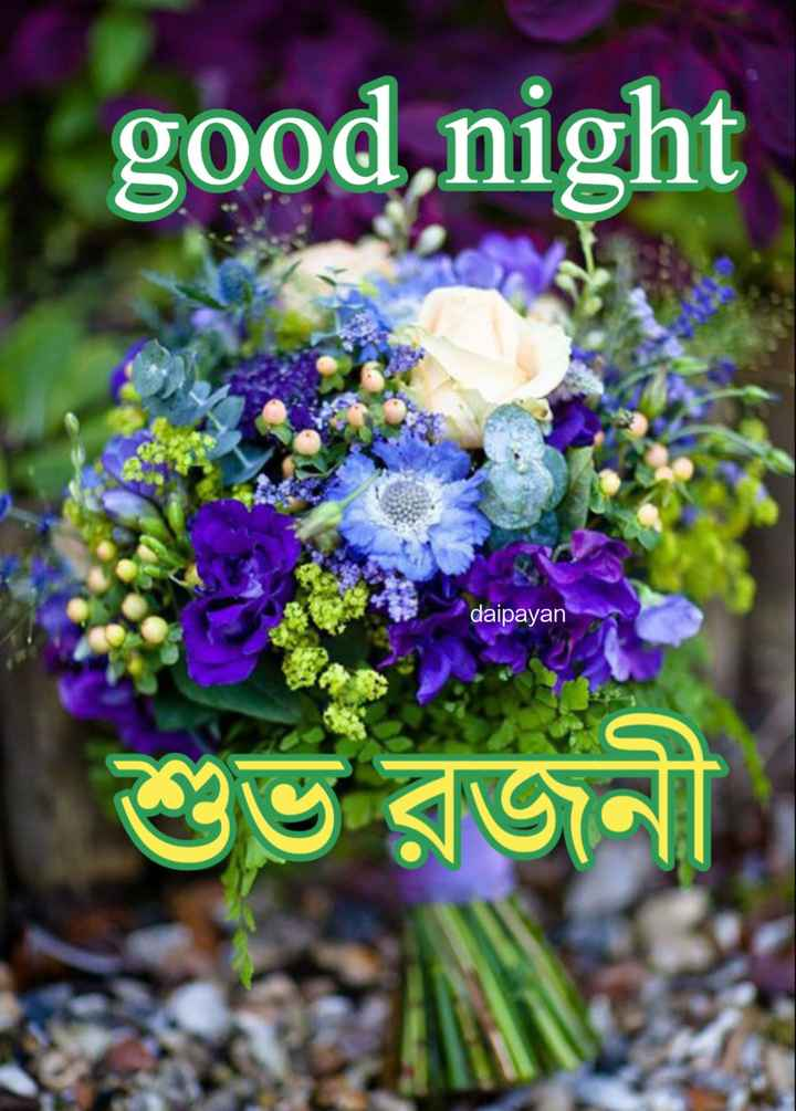 🌑শুভ রাত্রি - good night daipayan শুভ রজনী - ShareChat