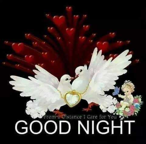 🌑শুভ রাত্রি - From a Distance I Care for You GOOD NIGHT - ShareChat