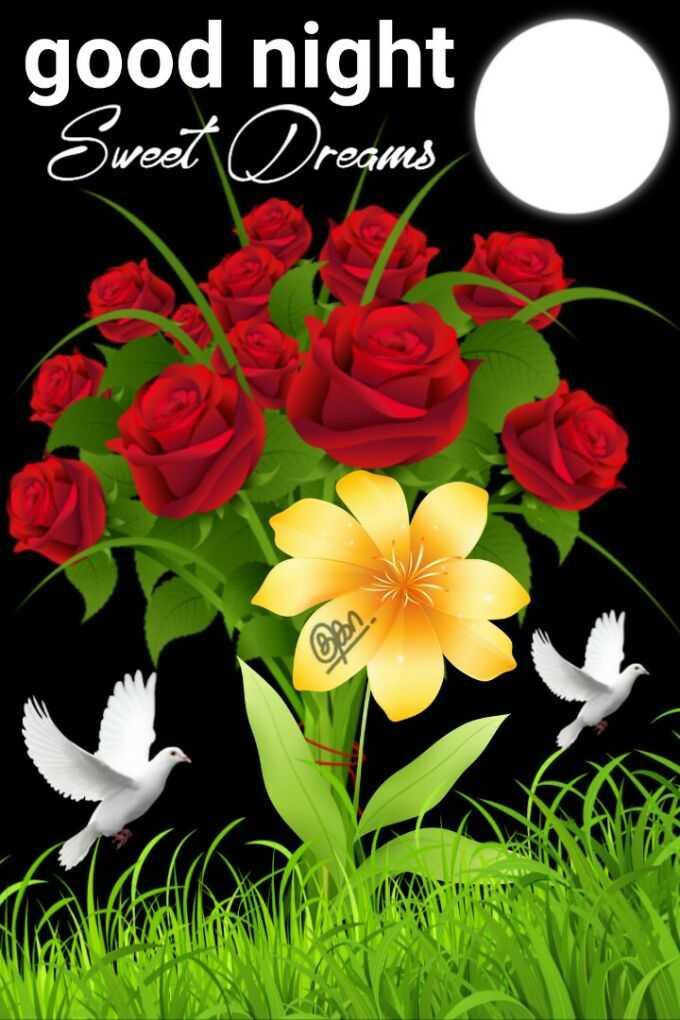 🌑শুভ রাত্রি - good night Sweet Dreams குகா - ShareChat