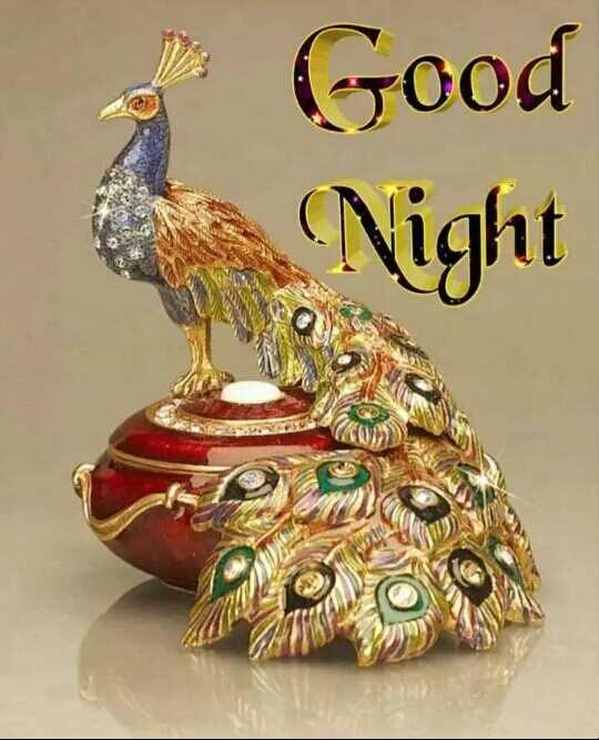 🌑শুভ রাত্রি - o Good Night - ShareChat