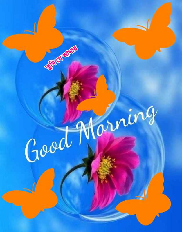 🌻🌼🌷শুভ সকাল।🌷🌼🌻 - তুমিআমার Good Morning - ShareChat