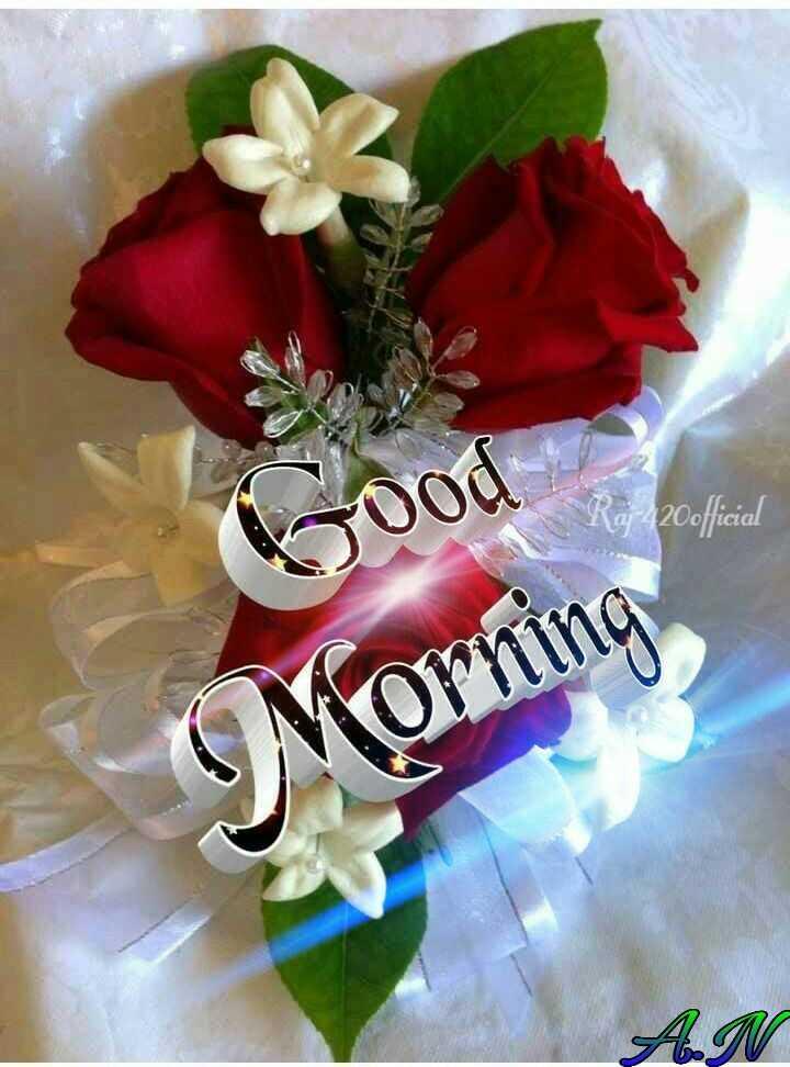 💗😳🌹😳💗👈শুভ সকাল👉🌹😳💗😳🌹 - Tood Rg 420official Morning - ShareChat