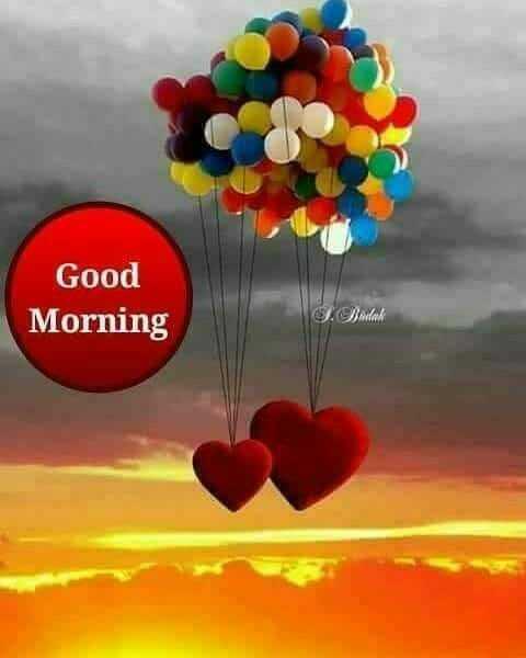 💗💗🌹💗💗👈শুভ সকাল👉💗💗🌹💗💗 - Good Morning - ShareChat