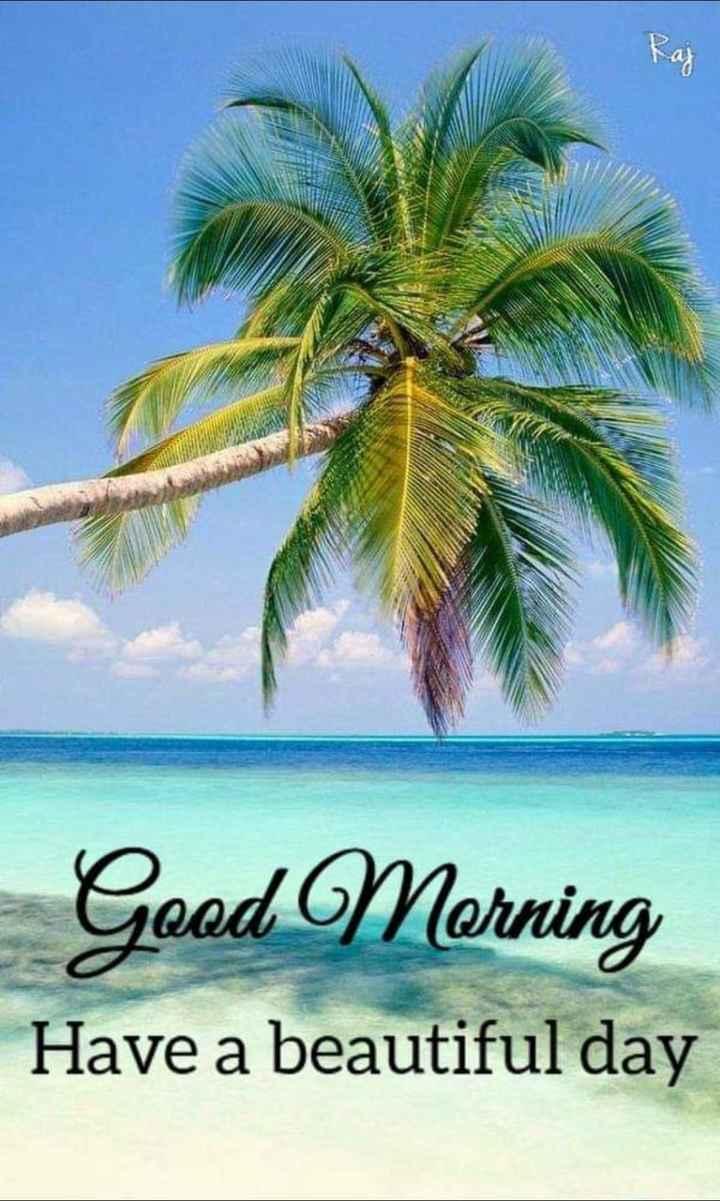 🌹🌹🌹শুভ সকাল🌹🌹🌹 - Good Morning Have a beautiful day - ShareChat
