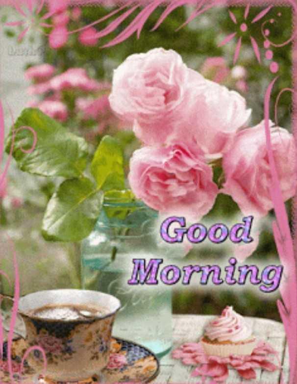 🌹🌹🕡🕡🕡 শুভ সকাল 🕡🕡🕡🌹🌹 - Good Morning - ShareChat