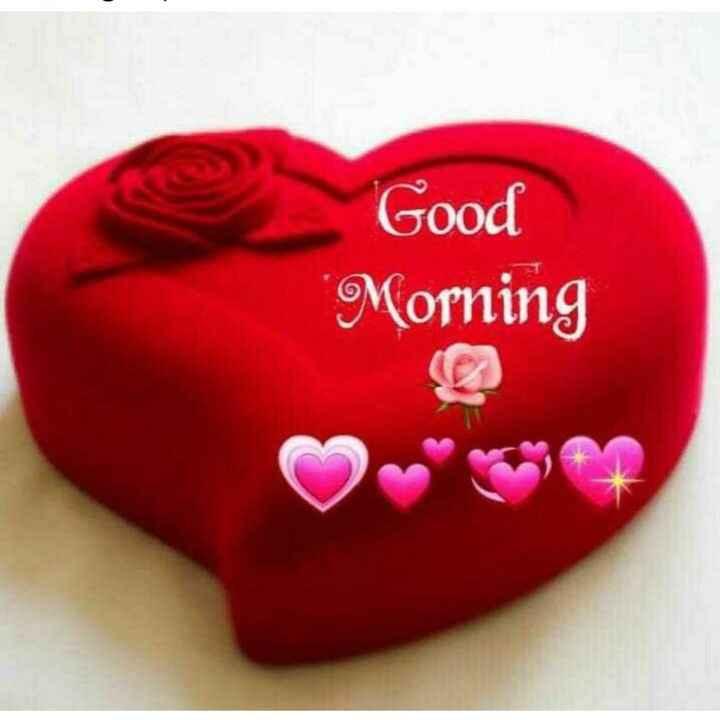 🌻শুভ সকাল 🌻 - Good Morning - ShareChat