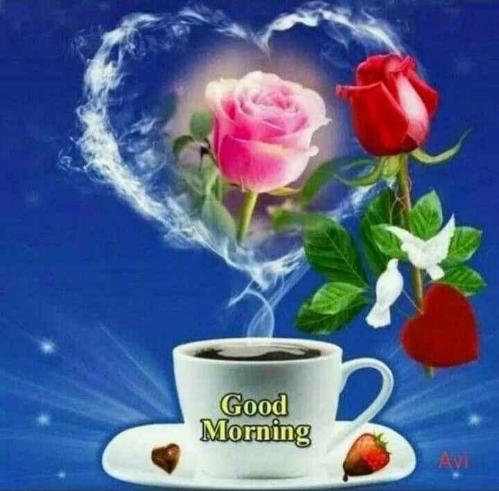 🌹🌹👌👌👌 শুভ সকাল 👌👌👌🌹🌹 - Good Morning AVI - ShareChat