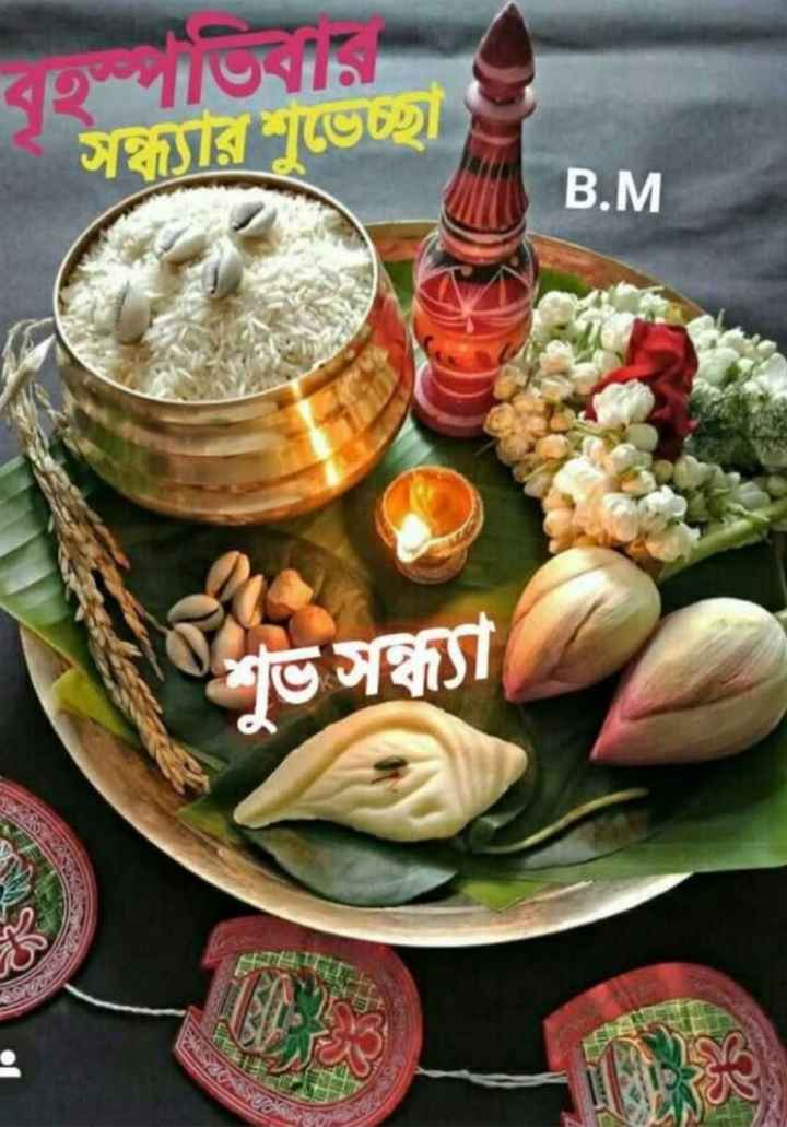 🌗শুভ সন্ধ্যা - স্যারভেচ্ছা B . M . । ভসা - ShareChat