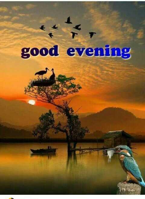 🌗শুভ সন্ধ্যা - good evening - ShareChat
