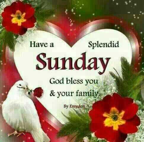 🌗শুভ সন্ধ্যা - Have a Splendid Sunday God bless you & your family By Emyden - ShareChat