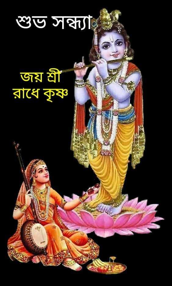 🌗শুভ সন্ধ্যা - শুভ সন্ধ্যা জয় শ্রী রাধে কৃষ্ণ য় এ s - ShareChat