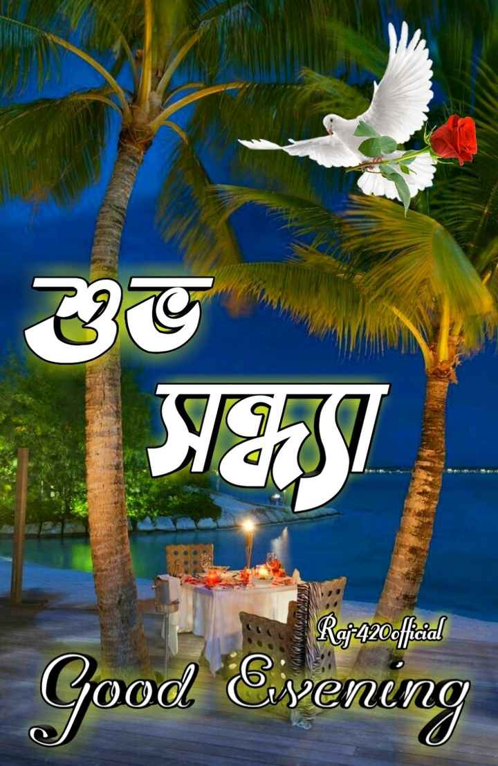 🌗শুভ সন্ধ্যা - 30 51431 R9 - 420official Good Evening - ShareChat