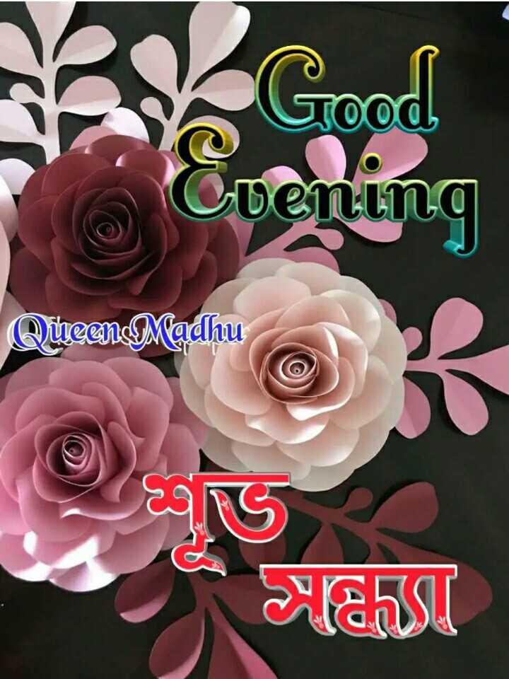 🌗শুভ সন্ধ্যা - Queen Madhu Haus - ShareChat