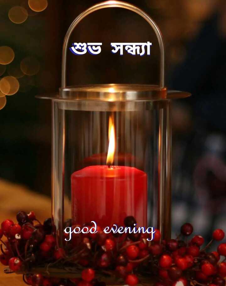🌗শুভ সন্ধ্যা - শুভ সন্ধ্যা good evening - ShareChat