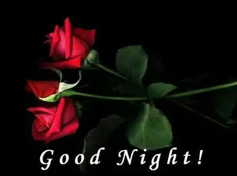 😴 শুভৰাত্ৰি - Good Night ! - ShareChat