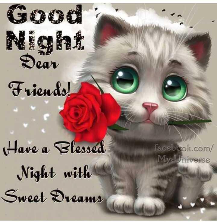 😴 শুভৰাত্ৰি - Good Night Dear Friends ! facebook . com / My - Universe Have a Blessed Night with Sweet Dreams - ShareChat