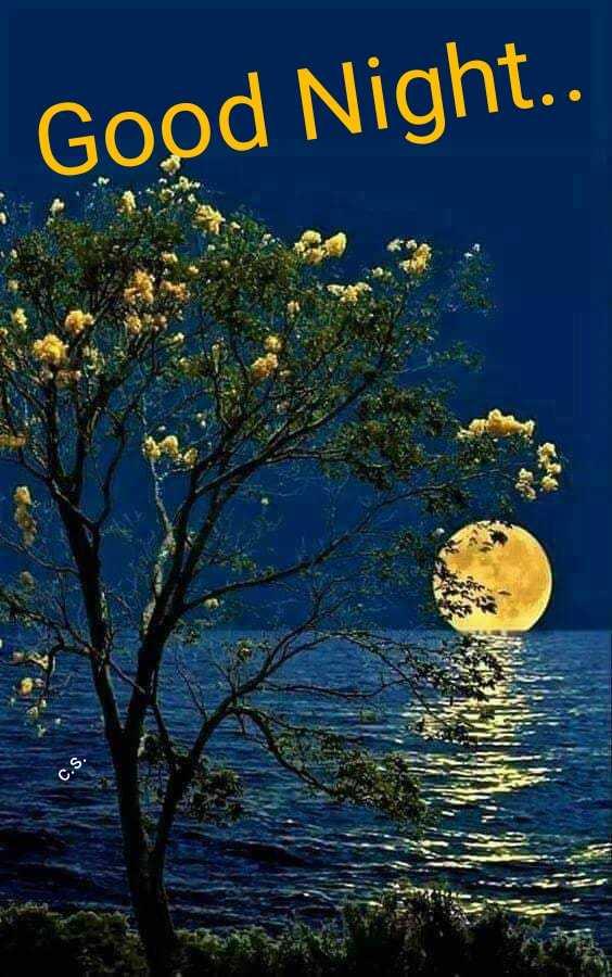 😴 শুভৰাত্ৰি - Good Night . . C . S . - ShareChat