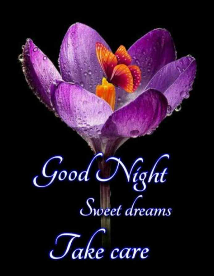 😴 শুভৰাত্ৰি - Good Night Sweet dreams Take care Owe PITO ms - ShareChat
