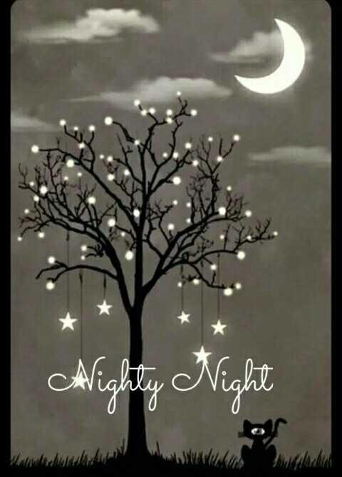 😴 শুভৰাত্ৰি - Alighly Night - ShareChat