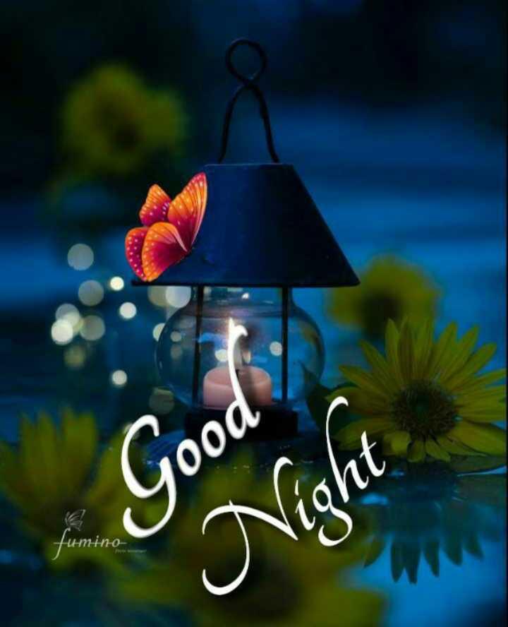 😴 শুভৰাত্ৰি - Good Night Интню - ShareChat