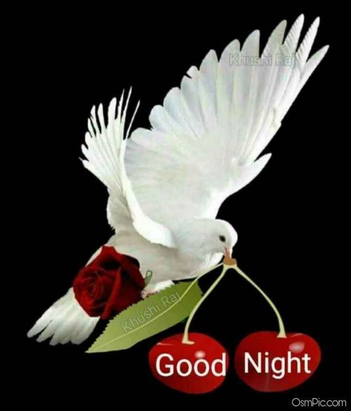 😴 শুভৰাত্ৰি - Khushi Rai Khushi Raj Good Night OsmPic . com - ShareChat