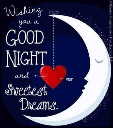 😴 শুভৰাত্ৰি - you a Wishing GOOD NIGHT ©Alanna Chasin , aka The Dog Buddbe and Sweetest Dreams . - ShareChat