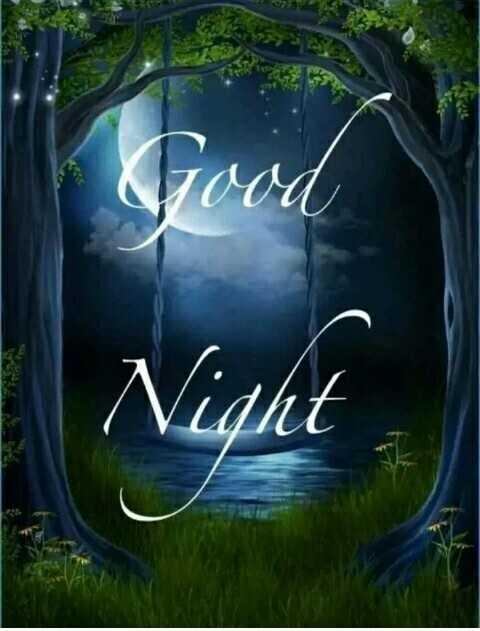 😴 শুভৰাত্ৰি - Night - ShareChat