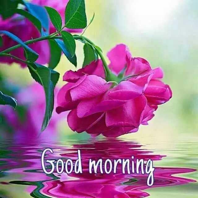 শ্বেয়াৰচাট কৰ্ণাৰ - Good morning - ShareChat