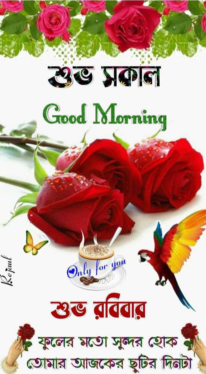 🌞সুপ্রভাত - শুভ সকাল Good Morning Rejaul Only for you শুভ রবিবার - ফুলের মতাে সুন্দর হােক । তোমার আজকের ছুটির দিনটা - ShareChat
