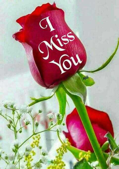 🌞সুপ্রভাত - Miss You - ShareChat
