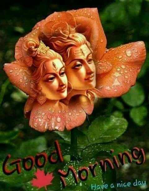 🌞সুপ্রভাত - Good Morning Have a nice day - ShareChat