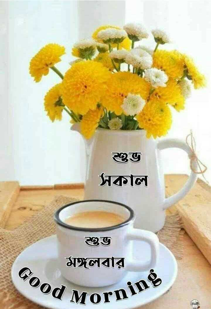 🌞সুপ্রভাত - শুভ সকাল শুভ মঙ্গলবার Good MO Morning - ShareChat
