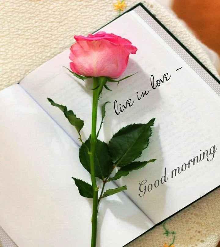 🌞সুপ্রভাত - Flive in love - Good morning - ShareChat