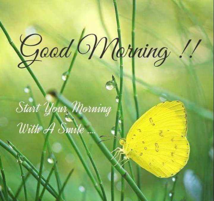 🌞সুপ্রভাত - Good Morning ! ! Start Your Morning A With A Smile . . - ShareChat