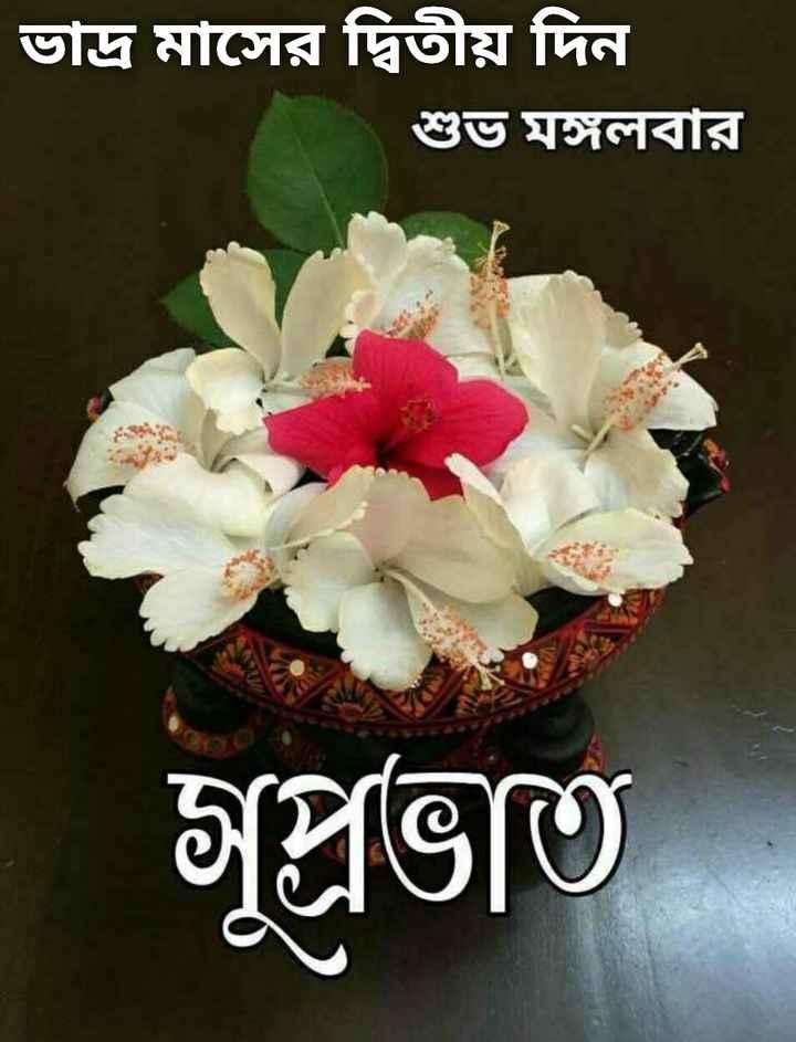🌞সুপ্রভাত - ভাদ্র মাসের দ্বিতীয় দিন শুভ মঙ্গলবার সুপ্রভাত - ShareChat