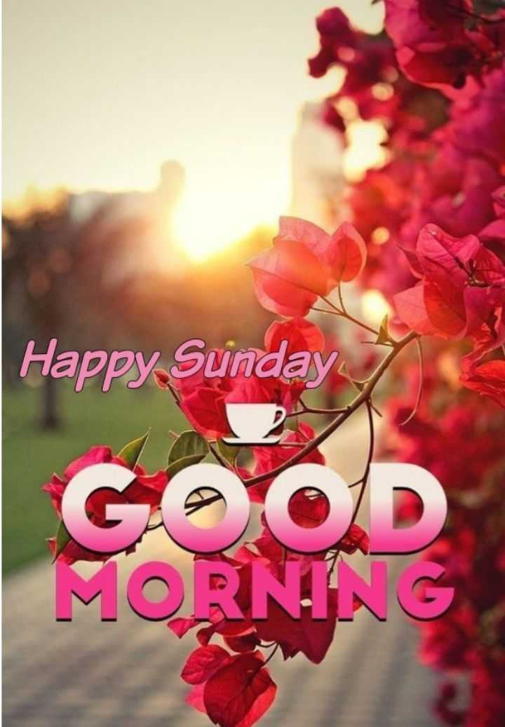 🌞সুপ্রভাত - Happy Sunday GOOD MORNING - ShareChat