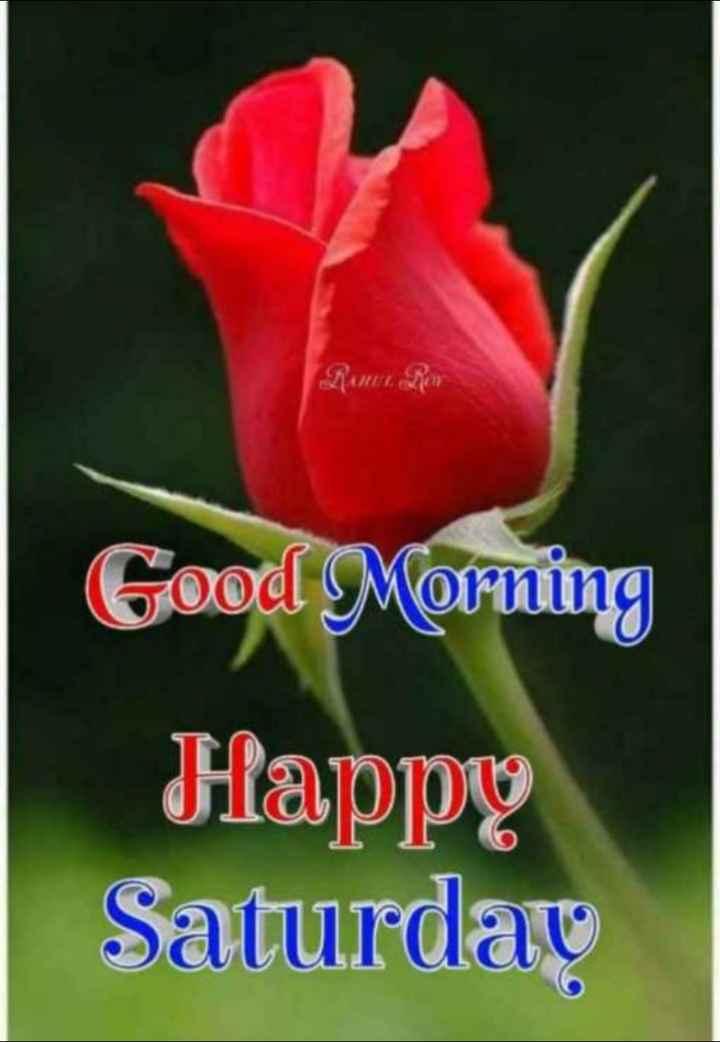 🌞সুপ্রভাত - Good Morning Happy Saturday - ShareChat