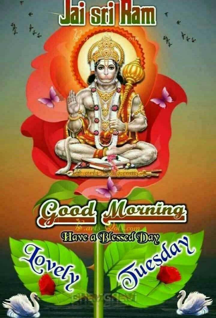 🌞সুপ্রভাত - Jai stiliam LED con Good Morning Have a Blessed Day Lovely Tuesday - ShareChat
