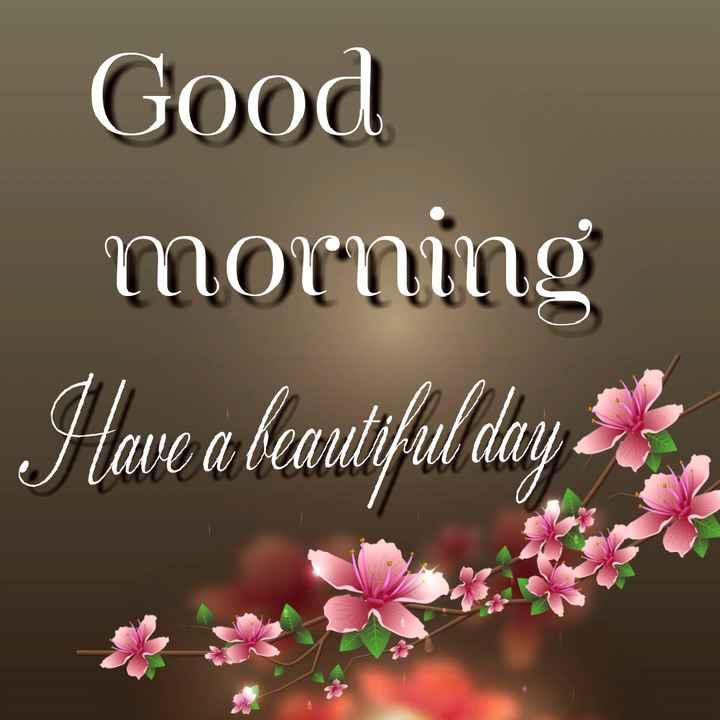 🌞সুপ্রভাত - Good morning Have a beautiful day = - ShareChat