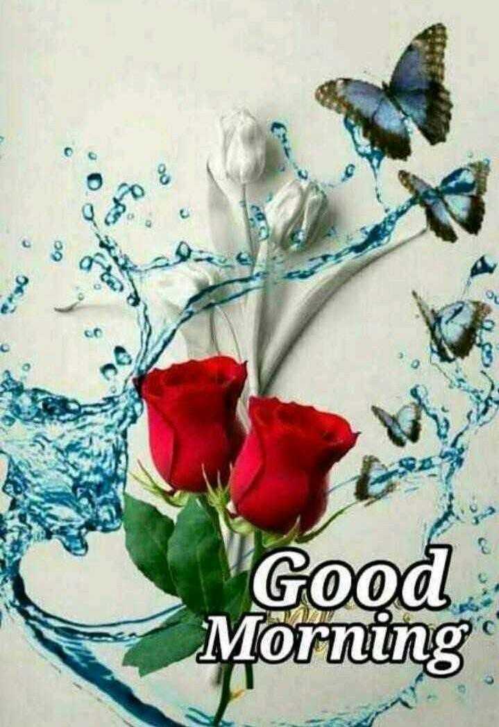 🌞সুপ্রভাত - 60 Good Morning - ShareChat