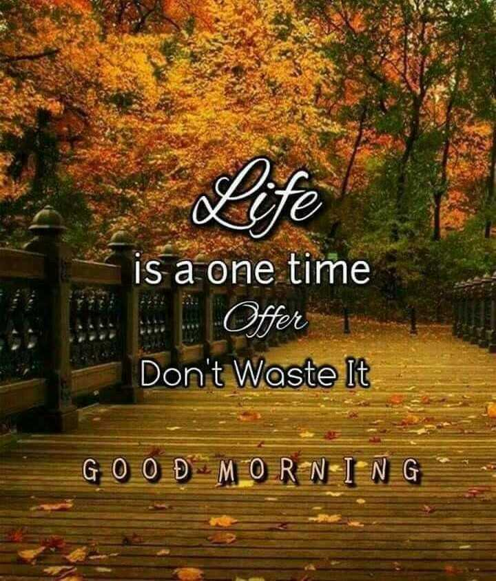 🌞সুপ্রভাত - is a one time B . Offer Don ' t Waste It G 0 0 Đ MO R N I N G - ShareChat