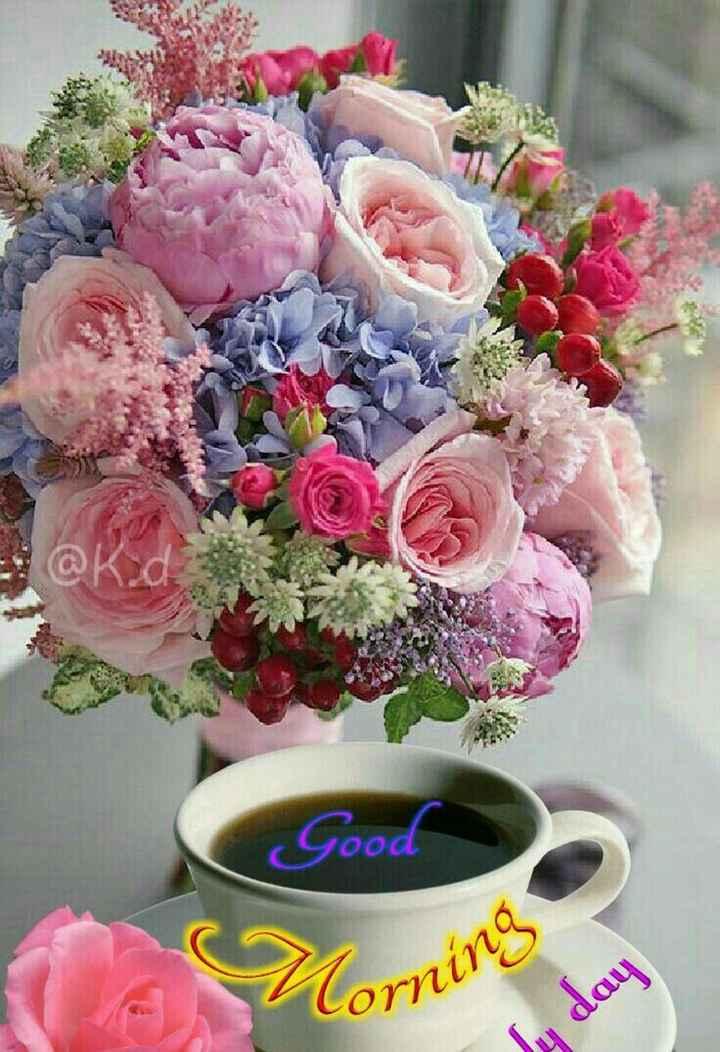 🌞সুপ্রভাত - @ K . d Good Alor Corning de day - ShareChat