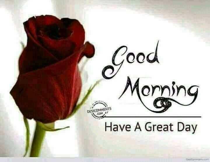🌞সুপ্রভাত - Good Morning DESICOMMENTS COM Have A Great Day Deco - ShareChat