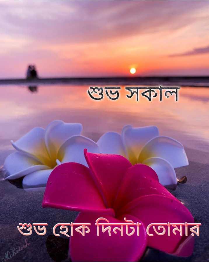 🌞সুপ্রভাত - শুভ সকাল শুভ হােক দিনটা তােমার । Mohitoske - ShareChat